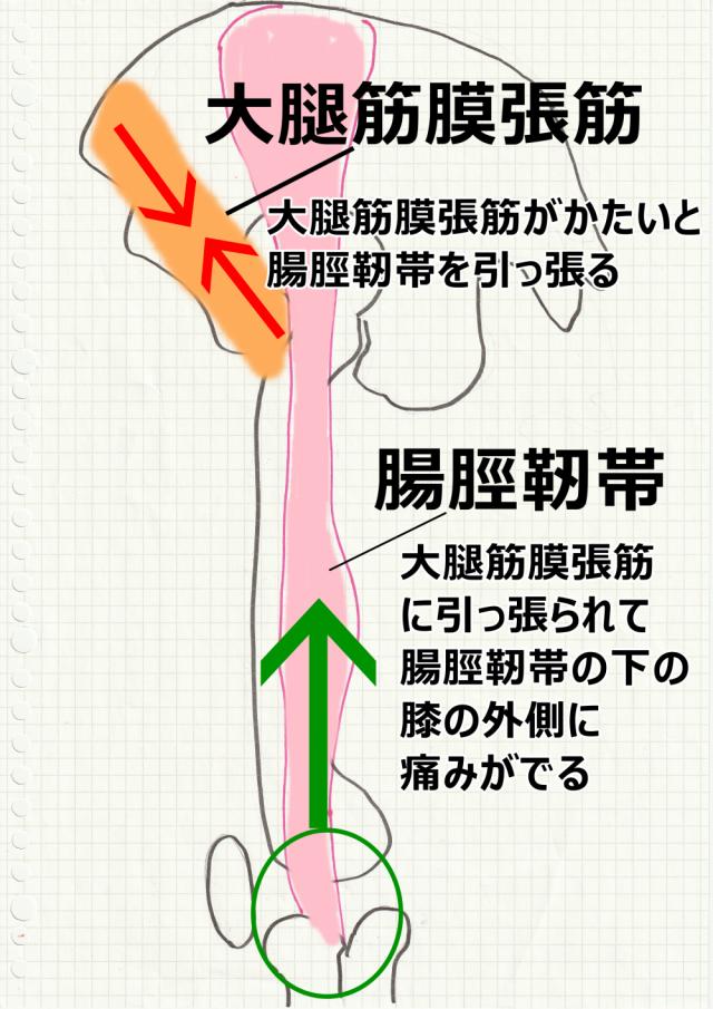 腸脛靭帯炎のメカニズム