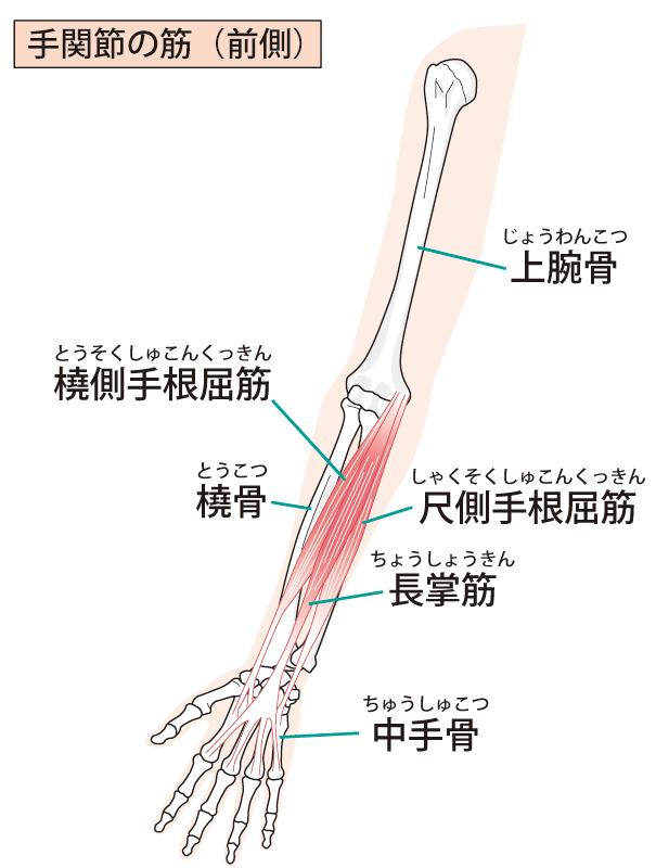 痛い 腕 内側